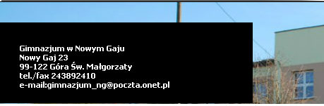 http://www.gimnazjumng.szkolnastrona.pl/index.php